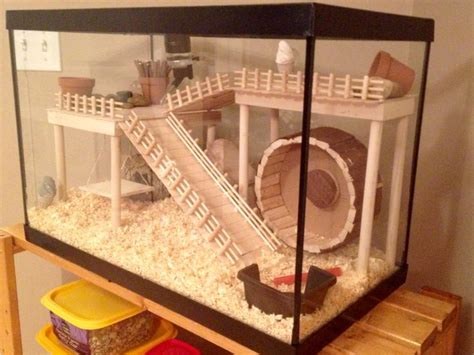 25 best ideas about hamster cages on hedgehog cage hamster cages for sale and