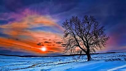Desktop Winter Widescreen Wallpapers Forest Background Uncalke