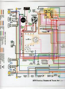 1981 Trans Am Wiring Diagram