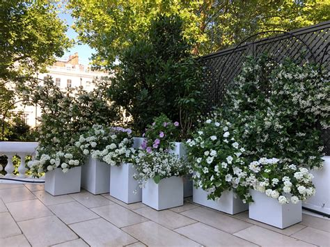 Fibreglass Cube Planters From Potstore.co.uk