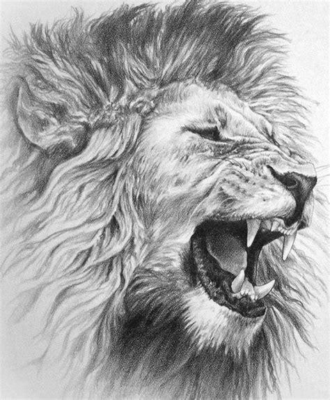 pin  james lillich  ink lion tattoo design lion