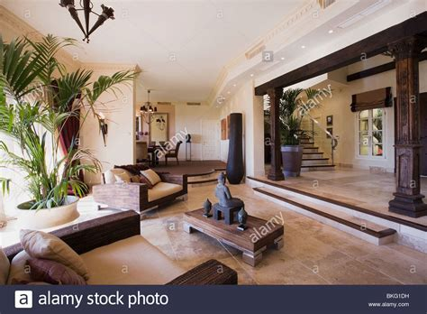 Tall houseplant in large open plan hall living room in