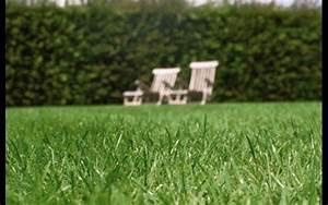 Engrais Gazon Naturel : gazon en rouleau jardiland ~ Premium-room.com Idées de Décoration