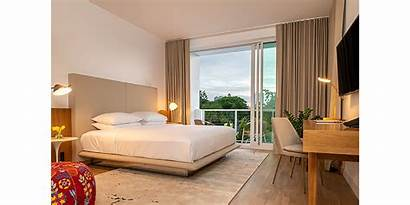Modern Sarasota Hotel Tribute Portfolio Opening Marriott