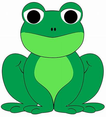 Frog Clipart Drawings Colorful Clipartion