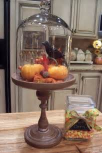 Glass Dome Cloche Decorating Ideas