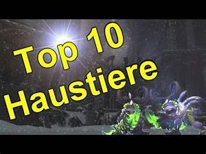 Welche Plissees Sind Die Besten : top 10 die besten haustiere in wow youtube ~ Orissabook.com Haus und Dekorationen