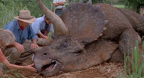 Triceratops (jurassic Park, The Lost World, Jurassic Park 3