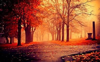 Screensavers Autumn Backgrounds Pc