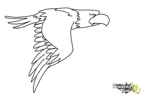 draw  cartoon eagle drawingnow