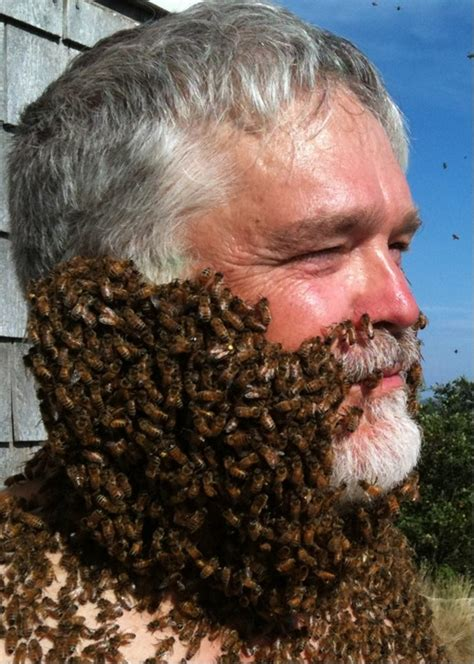 bees honey decisions brains face ucr hunting complex both