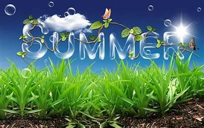 Summer Summertime Desktop Fun Allergy Its Away