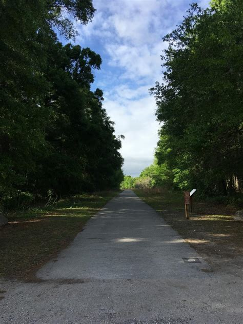 bike paved trail withlacoochee florida bicycle flat tour trails state paths