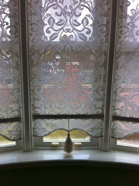lace plasticised blinds ogormans lace blinds