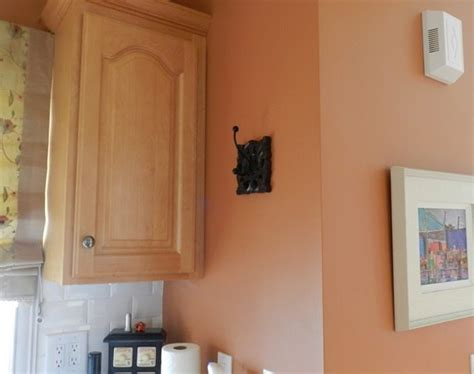 great wall color for light medium kitchen cabinets bernier designs