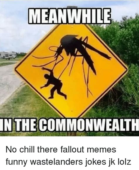 Funny Fallout Memes - meanwhile in the commonwealth no chill there fallout memes funny wastelanders jokes jk lolz