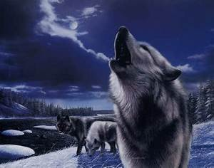 Wolf World images Wolf Howling wallpaper and background