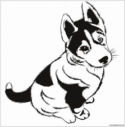 Husky Pages Dog Coloring Puppies Puppy Printable