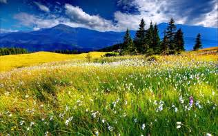 Screensavers Mountain Spring Meadow