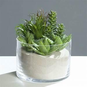 Action Online Shop Deko : sukkulenten kunstpflanzen im deko mich online shop ~ Bigdaddyawards.com Haus und Dekorationen