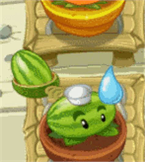 Pflanzen Gegen Zombies Pilze Im Zen Garten by Melonapult Pflanzen Gegen Zombies Wiki Fandom Powered