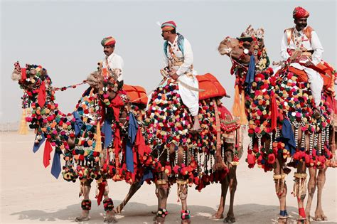 Pushkar Camel Festival Background by 10 Reasons Why You Should Visit Rajasthan