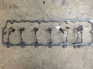 2005 International Dt466e Engine Wiring Harness For A