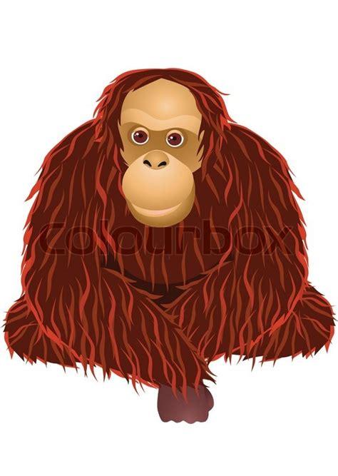 orangutan cartoon stock vector colourbox