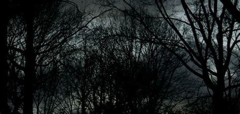 fondos de pantalla oscuros   tonos en gris webgenio