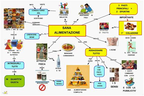 mappa concettuale  alimentazione scuolissimacom
