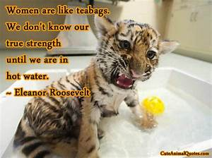 Baby Animal Quotes. QuotesGram