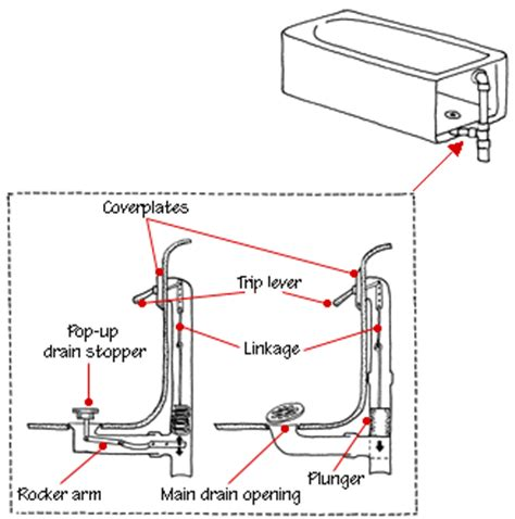bathtub drain lever diagram how a bathtub works