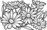 Coloring Daisies Colorear Margaritas Flower Printable Dibujos Disegni Daisy Margherite Flores Easy Flor Nature Dibujo Colorir Adult Supercoloring Stampare Imprimir sketch template