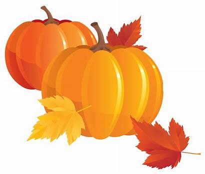 Pumpkin Transparent Clipart Autumn Fall Pumpkins Clip