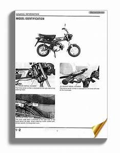 Honda Cb600f Hornet 98 Service Manual