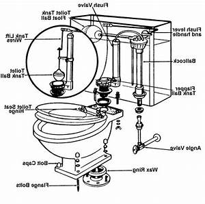 Commode parts tank toilet assembly replacement jaiaincus for Toilet tank parts