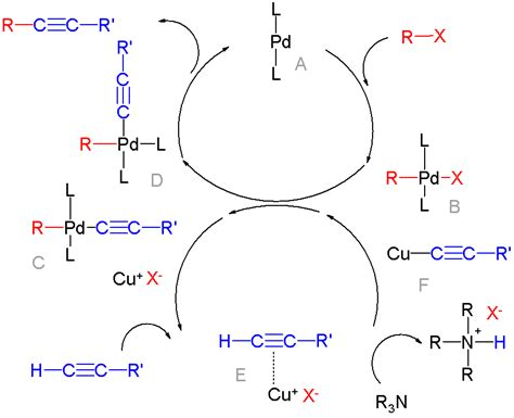 Suzuki Coupling Reaction by Palladium Catalyzed Coupling Reactions