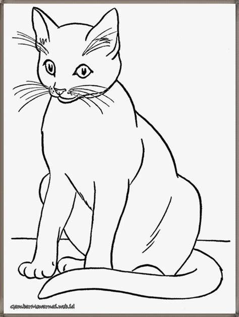 Coloring Kucing by 65 Best Gambar Mewarnai Images On Colouring