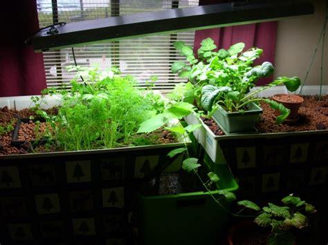 understanding hydroponic aeroponic and aquaponic