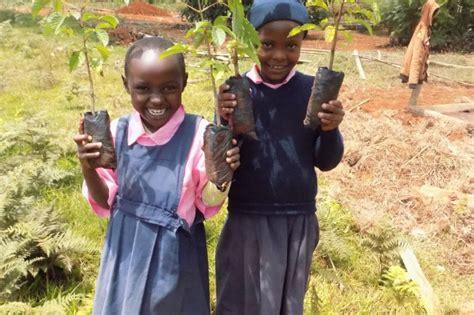 Reports on School Greening Programme for Kenyan Pupils ...