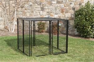 DIY Outdoor Dog Kennel