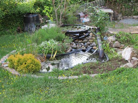fiberglass bathtub turn your backyard into a fish farm raise tilapia at