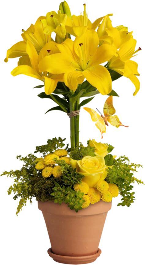 fleur en pot ou vase