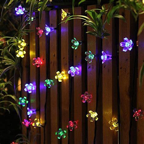 fence decorations amazoncom