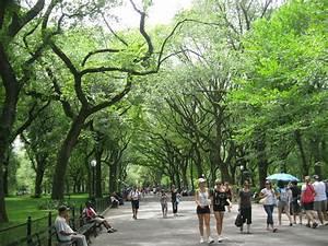 Parks In London : city parks london paris new york accentbritain ~ Yasmunasinghe.com Haus und Dekorationen