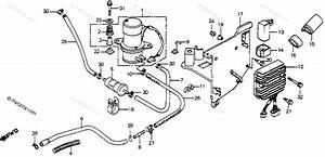 Honda Motorcycle 1985 Oem Parts Diagram For Fuel Pump