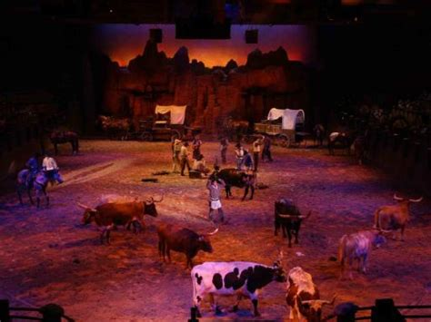 buffalo bills wild west show  disneyland paris atd