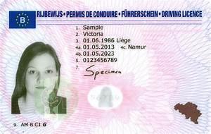 Numero De Permis De Conduire : permis de conduire belgique specialist car and vehicle ~ Medecine-chirurgie-esthetiques.com Avis de Voitures