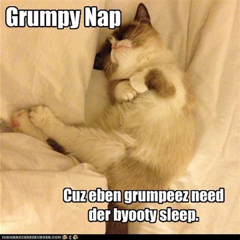 But alwayz wake up on grumpy side. - Lolcats - lol | cat ...
