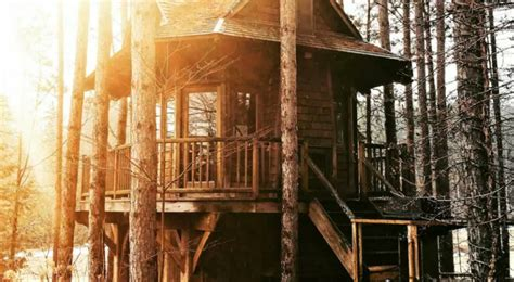 Tree House Airbnb The 7 Best Airbnb Treehouses In Canada Chatelaine